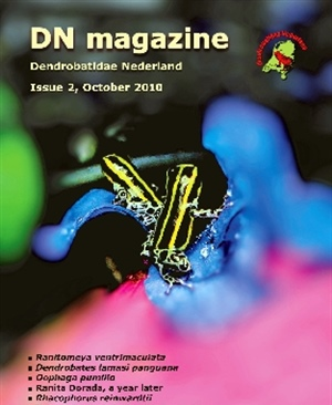 DN English Magazine issue 2